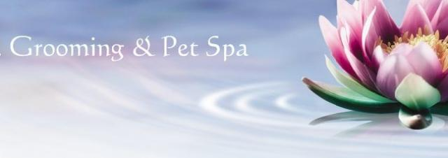 Perfect paws grooming spa home for A perfect pet salon